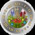 Монета С Новым годом-19